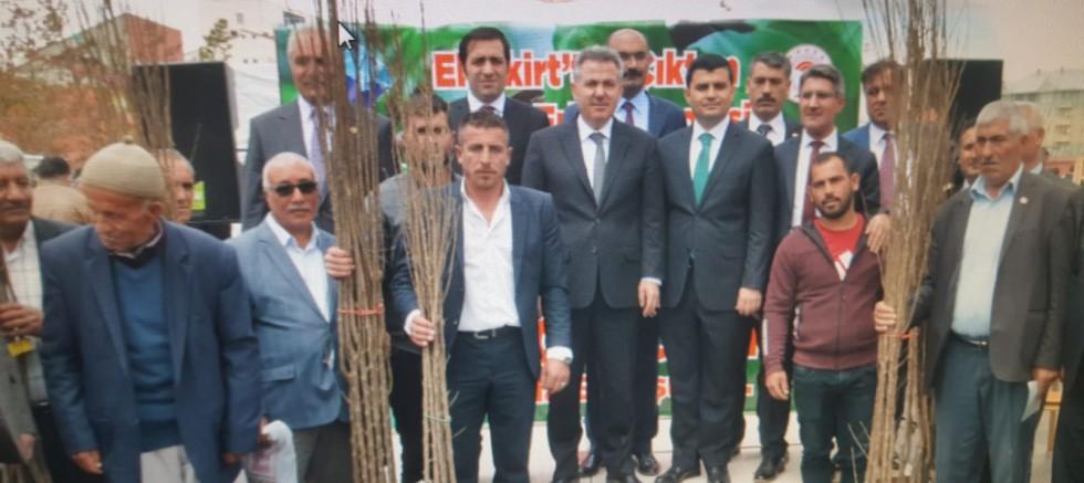 Vali Elban'ın Katılımıyla  Eleşkirt'te 7500 Fidan Dağıtıldı